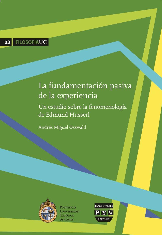 La fundamentación pasiva de la experiencia: un estudio sobre la fenomenología de Edmund Husserl Book Cover